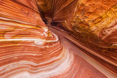 US03RBS0098 The Wave, Coyote Buttes, Paria-Vermilion Cliffs Wilderness, Arizona, USA