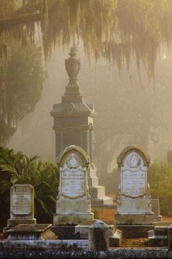 US11JWL1054 USA, Georgia, Savannah. Foggy morning at Historic Bonaventure Cemetery.