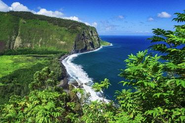 US12RBS0490 Waipio Valley, Hamakua Coast, The Big Island, Hawaii, USA