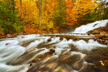 CN08BJY0248 Canada, Ontario, Rosseau. Skeleton River at Hatchery Falls in autumn
