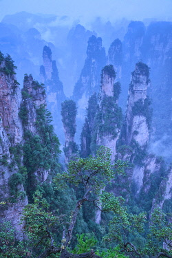 CH11982AW China, Hunan Province, Wulingyuan, Wuling Mountain