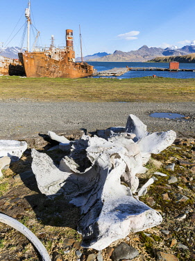 AN02MZW0120 Grytviken Whaling Station, open to visitors, but most walls and roofs of the factory have been demolished for safety reasons. South Georgia Island