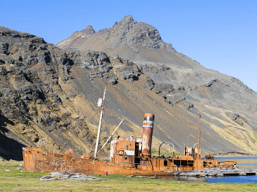 AN02MZW0137 Wreck of the Dias in Grytviken. Grytviken Whaling Station, open to visitors, but most walls and roofs of the factory have been demolished for safety reasons. South Georgia Island