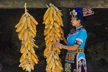 AS07KSU2307 Qiang girl in traditional clothing with corn cobs, Taoping Qiang Village, Ngawa Tibetan and Qiang Autonomous Prefecture, western Sichuan, China