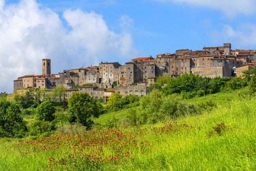 ITA14015AW View at Roccastrada, Grosseto, Maremma, Tuscany, Italy
