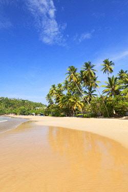SRI2349AWRF Mirissa beach, Southern Province, Sri Lanka