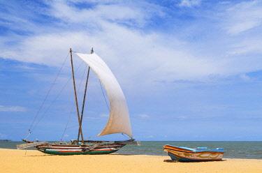 SRI2295AW Oruwa (outrigger canoe) on Negombo beach, Western Province, Sri Lanka