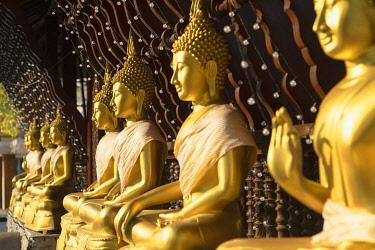 SRI2370AWRF Statues at Seema Malakaya on Bere Lake, Colombo, Sri Lanka