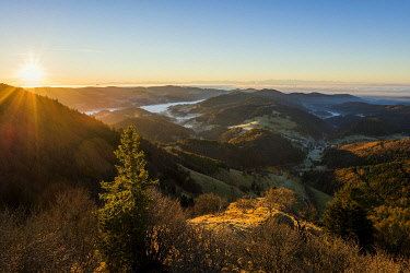 IBXDJS04851426 View from Belchen into Wiesental valley, morning mood with fog, Black Forest, Baden-Wurttemberg, Germany, Europe