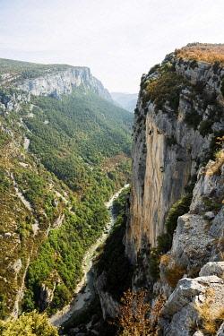 IBXDJS04866303 Verdon Gorge, Gorges du Verdon, Verdon Regional Natural Park, Provence, Provence-Alpes-Cote-d' Azur, Southern France, France, Europe