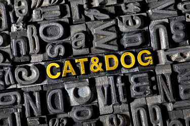 """IBXTSV02223879 Old lead letters forming the words """"CAT & DOG"""""""