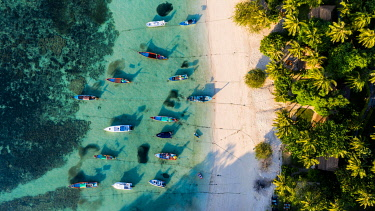 IBLDBR04864100 Beach with palmes and boats, Thian Og Bay or Shark Bay, Koh Tao Island, Thailand, Asia