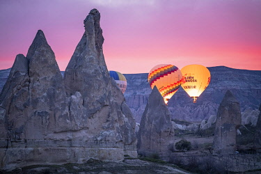 TUR1079AW Hot Air Balloons rising at sunrise in Rose Valley, Cappadocia, Turkey