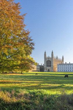 UK08519 UK, England, Cambridge, The Backs, King's College, King's College Chapel