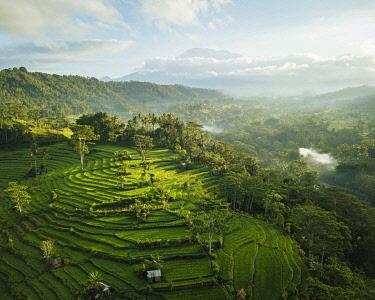 IDA0964AW Aerial View of Landscape near Sidemen, Bali, Indonesia
