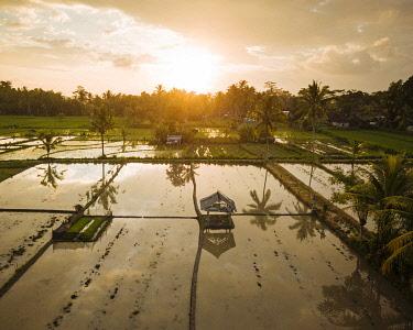 IDA0968AW Aerial View of Sunset over Rice Fields near Sidemen, Bali, Indonesia