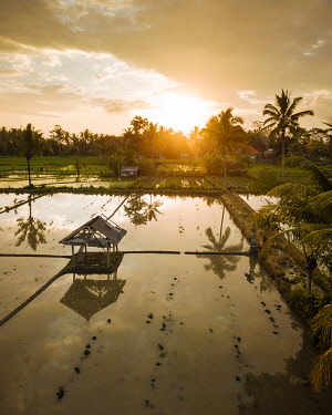 IDA0969AW Aerial View of Sunset over Rice Fields near Sidemen, Bali, Indonesia