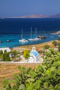 GR08362 Agios Ioannis, Mykonos, Cyclade Islands, Greece