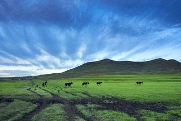 LES1204AW Lesotho, Maseru District, Semonkong, man on horseback