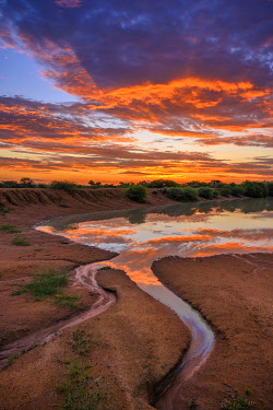 SAF7587AW South Africa, Limpopo province, water hole at sunset