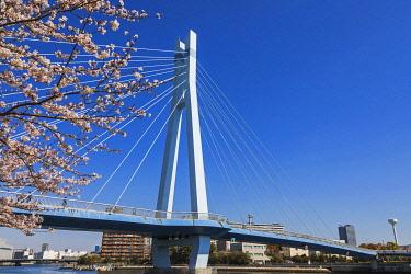 TPX69903 Japan, Honshu, Tokyo, Toyosu, Shinonome, Sakurabashi Bridge