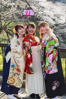 TPX70179 Japan, Honshu, Tokyo, Kudanshita, Chidori-ga-fuchi, Female University Students Dressed in Traditional Hakama Graduation Costumes with Cherry Blossom in Background