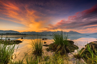 IBXSEI04821680 Forggensee with reflection of the cloudy sky and the Allgauer mountains in the background at sunrise, Fussen, Allgau, Bavaria, Germany, Europe