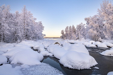 IBXROH04892079 Snow-covered trees on a river, river landscape in winter, Pallas-Yllaestunturi National Park, Muonio, Lapland, Finland, Europe