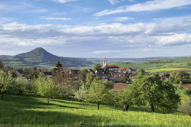 IBXMKL04891185 Orchard meadow with village Weiterdingen in Hegau, at the back Hegau volcano Hohenhewen, Baden-Württemberg, Germany, Europe