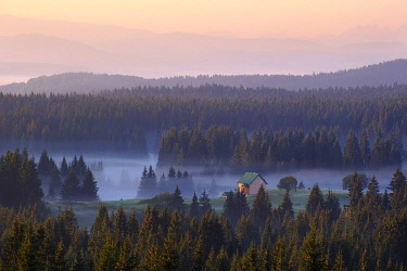 IBXMAN04825981 Small house on alp in the forest with morning fog, view from Curevac, National Park Durmitor, Province Zabljak, Montenegro, Europe