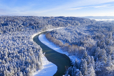 IBXMAN04885736 Isar meanders through snow-covered forest area, nature reserve Isarauen near Geretsried, drone shot, Upper Bavaria, Bavaria, Germany, Europe