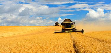 IBXKCV04892003 Two combine harvesters in cornfield harvest Barley (Hordeum vulgare), Getreidefeld mit Wolkenhimmel, Saalekreis, Saxony-Anhalt, Germany, Europe