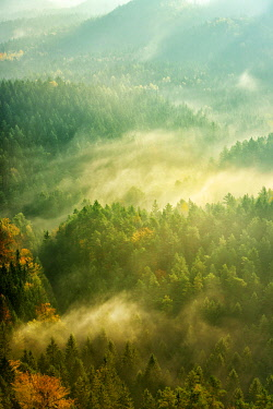 IBXAVI04892245 Morning atmosphere, view over forests with rising fog in autumn, Saxon Switzerland National Park, Saxony, Germany, Europe