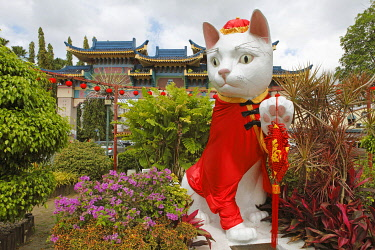 IBXCXB04241243 Cat sculpture, Kuching, city of cats, Sarawak, Borneo, Malaysia, Asia