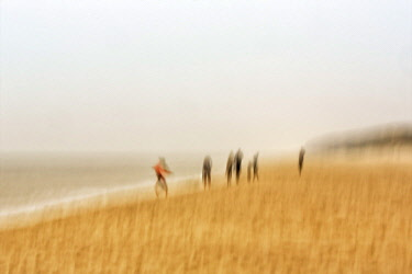 IBXANT04883592 Walkers on the beach, autumn day on the Red Cliff, blur effect, Wenningstedt, Sylt, Frisian Islands, Schleswig-Holstein, Germany, Europe