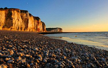 IBXAVI04892224 Chalk cliffs of the alabaster coast in the evening light, Côte d'Albâtre, Les Petites Dalles, Normandy, France, Europe