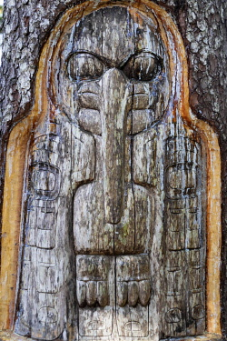 US41193 USA, Alaska, Juneau, Mount Roberts detail of totem wood carving