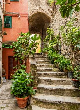 ITA14179AW Narrow Street of Vernazza, Cinque Terre, UNESCO World Heritage Site, Liguria, Italy