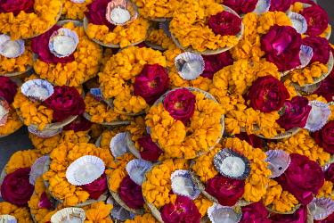 IN424RF India, Uttar Pradesh, Varanasi, Flower offerings at Dashashwamedh Ghat - The main ghat on the Ganges River