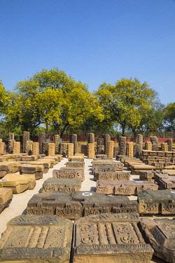 IN08488 India, Uttar Pradesh, Sarnarth, near Varanasi, Dhamekh Stupa and ruins complex