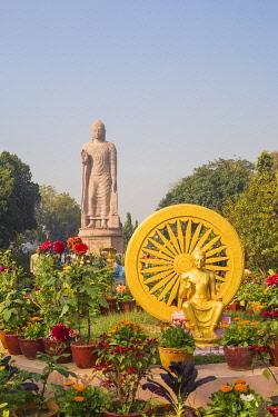 IN08498 India, Uttar Pradesh, Sarnarth, near Varanasi, Hinayana Buddha temple know as the Thai temple and monastry
