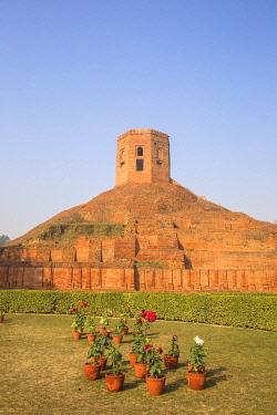 IN08511 India, Uttar Pradesh, Sarnarth, near Varanasi, Chaukhandi Stupa, marks the spot where Budda met his first disciples
