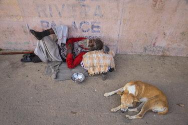IN08528 India, Uttar Pradesh, Varanasi, Man and dog sleeping on pavement