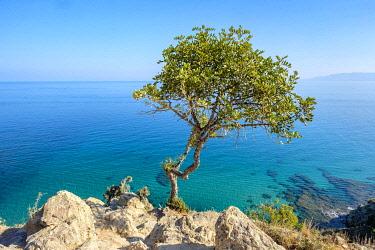 CYP0069AWRF Akamas Peninsula National Park, Neo Chorio, Paphos District, Cyprus