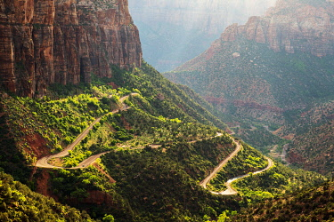 USA14569AW Road to Canyon overlook Zion National Park, Utah, USA