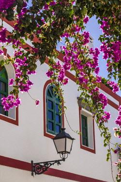 ES09449 Spain, Canary Islands, Gran Canaria Island, Puerto de Mogan, flowers