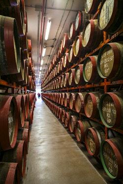ES09506 Spain, Canary Islands, Gran Canaria Island, Arucas, Destilerias Arehucas run distillery, rum aging in wooden barrels