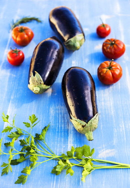 ITA14458 Fresh Aubergines and Tomatoes with fresh rosemary and parsley.