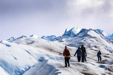 CLKFM109692 Argentina,Patagonia,Santa Cruz province,Los Glaciares National Park,hikers on the Perito Moreno glacier