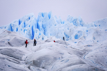 CLKFM109703 Argentina,Patagonia,Santa Cruz province,Los Glaciares National Park,hikers on the Perito Moreno glacier